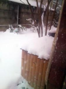バレンタインデーに雪が降った日